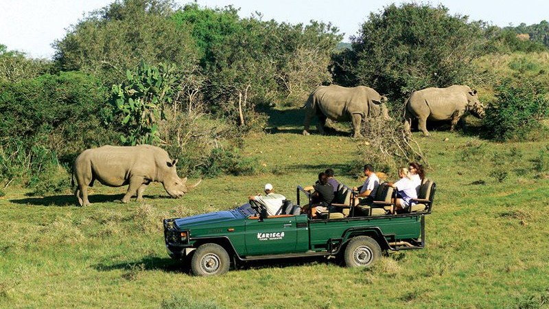 Africa Tours For Singles